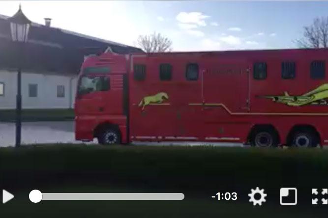 23 hästar på väg till Florida