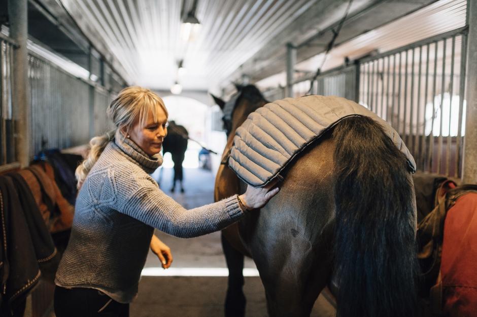 """Hästentreprenören: """"Jag sydde vetevärmaren av några påslakan"""""""
