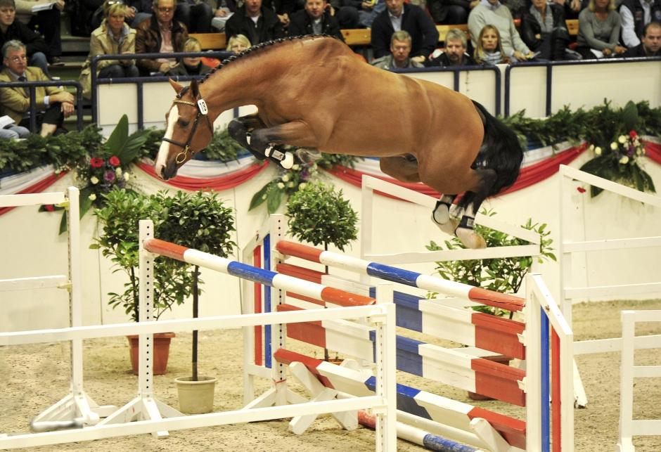 Holsteinerförbundet mönstrade 69 talanger