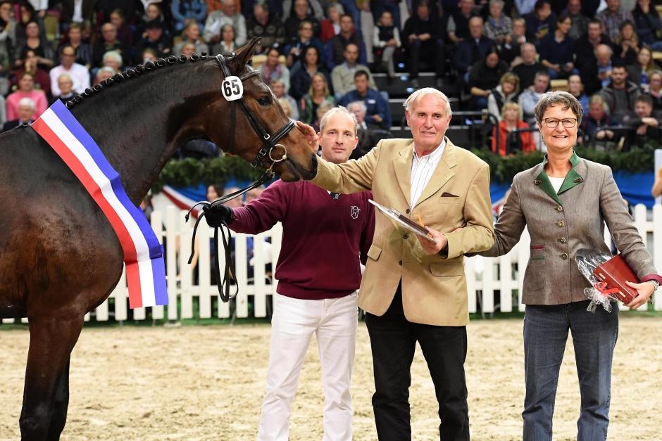Sandro Junior segerhingst i Holstein