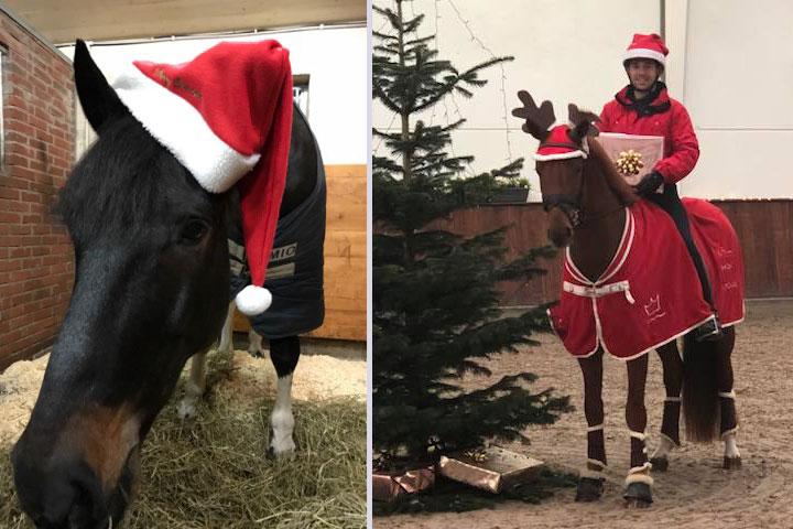 Så firar hästarna jul