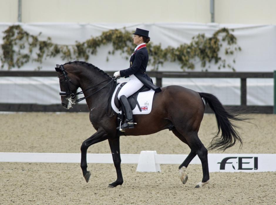 OS-hästen Lancet är död