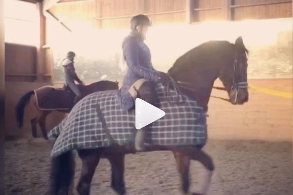 Cecilia Bergåkra på hästryggen igen