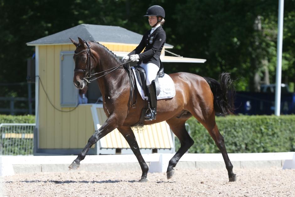 Mästerskapshäst till Jennifer Lindvall