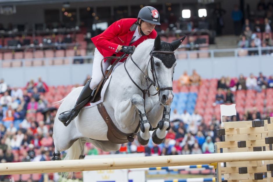 OS- och EM-hästen har repat sig efter kolikoperationen
