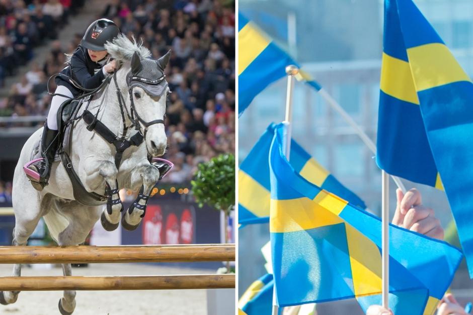Svenska ponnylagen regerade på Baltic Cup