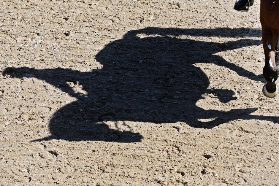 Här är ryttarna som kan få en SWB-häst donerad