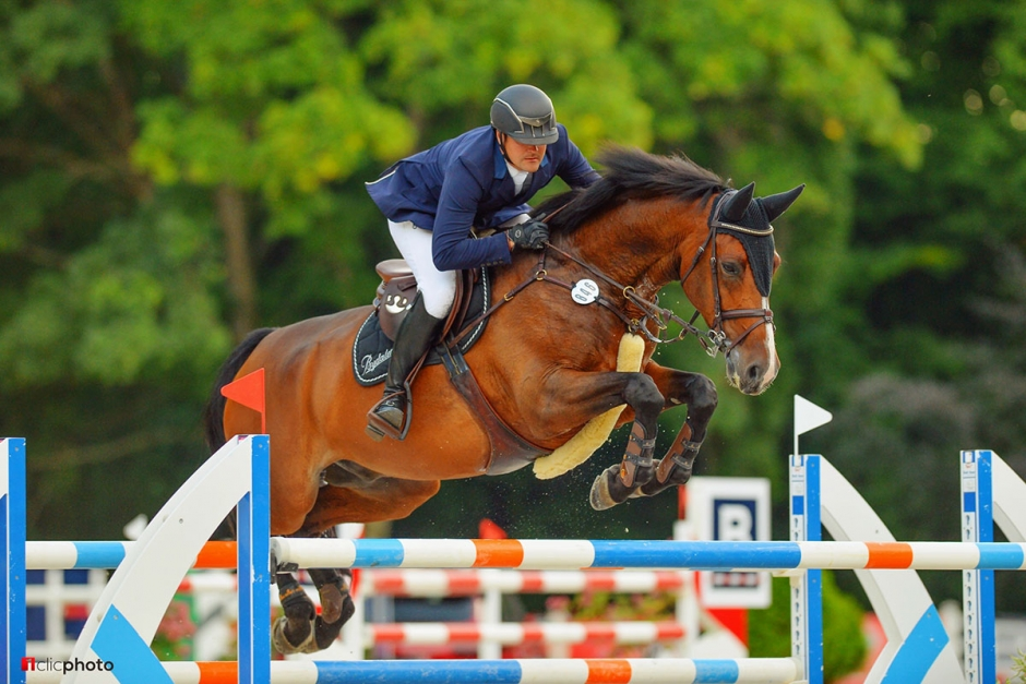Svenskägd häst går nationshoppning för Nya Zeeland