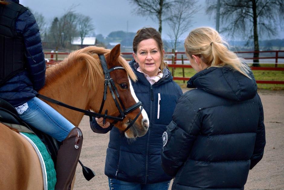 Kicki Sander om konsten att hantera ponnyföräldrar