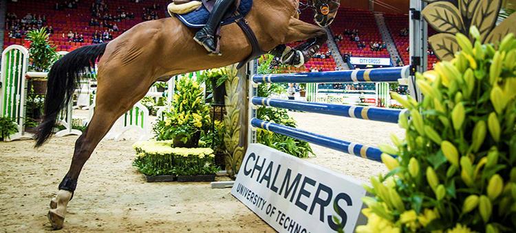 Smart hinder mäter kraften i hästarnas avstamp
