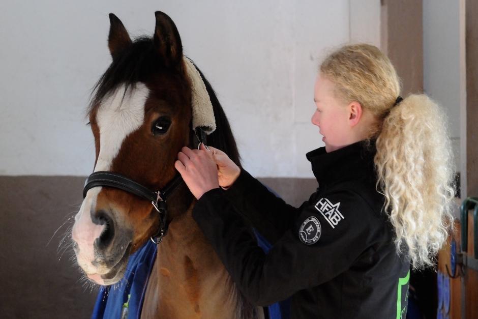 15-årig körtalang redo för Scandinavium