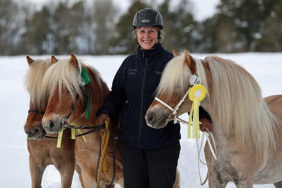 Härlig triss för Stuteri Mariline på Gotland