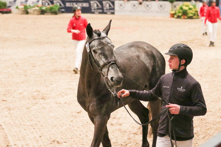 Kannando Hästak slutgiltigt godkänd i DWB