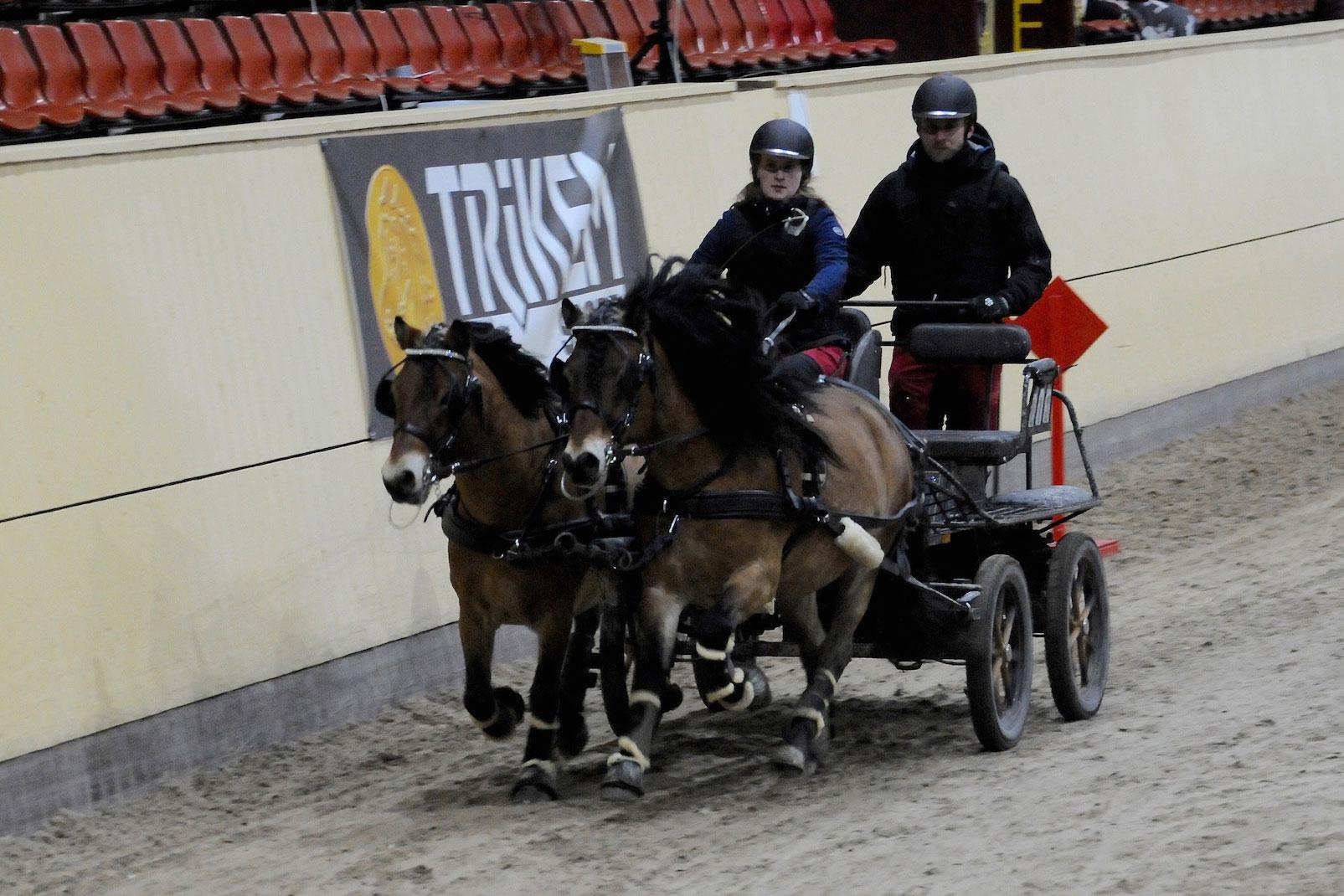 Malin Olsson med sitt fina russpar Gulldis och Umbrid. Trea i lätt klass i Hjulkul-finalen.