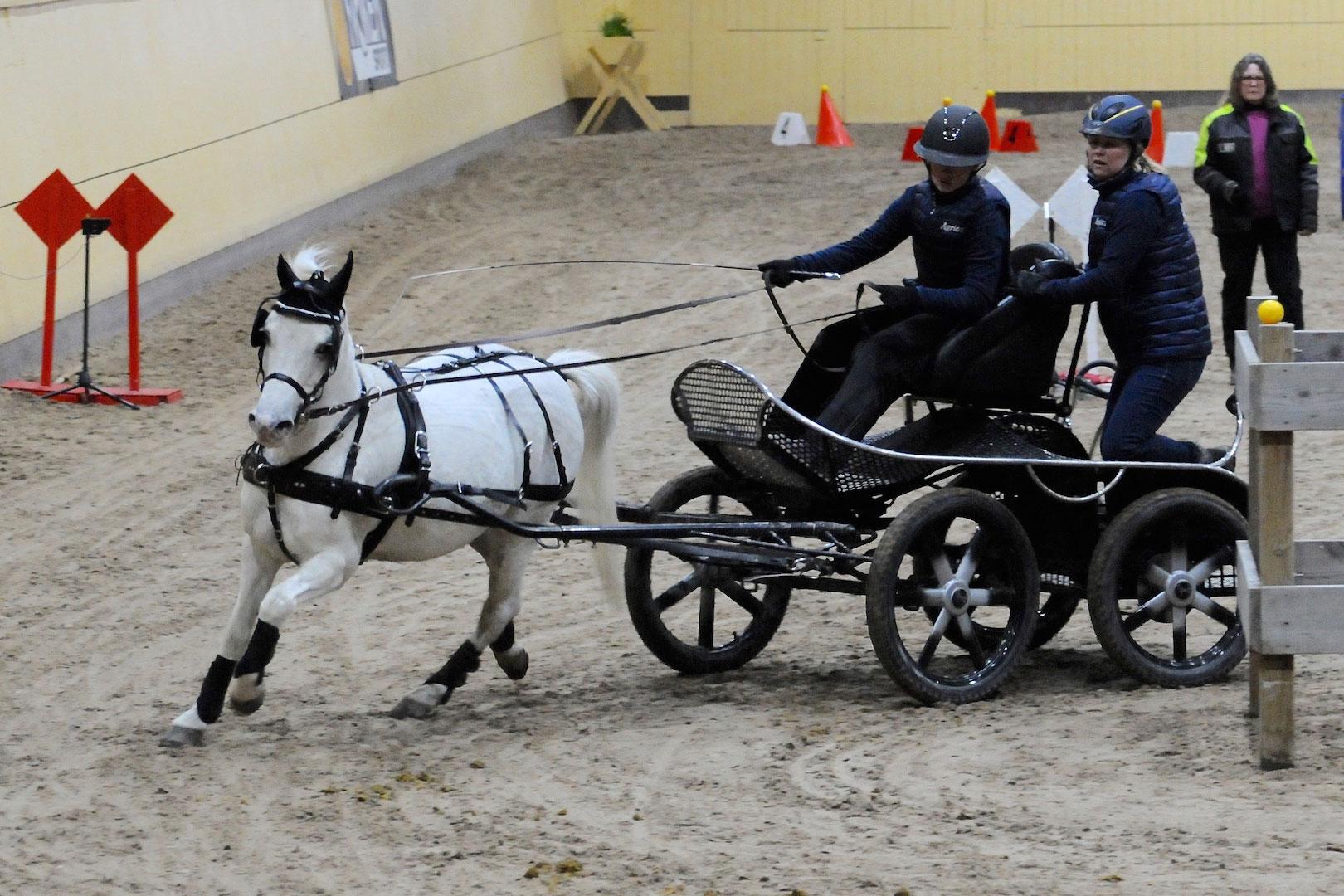 Victoria Persson och ponnyn Urby, ännu en ung kusk som vill vara med. Groom är mamma Helena