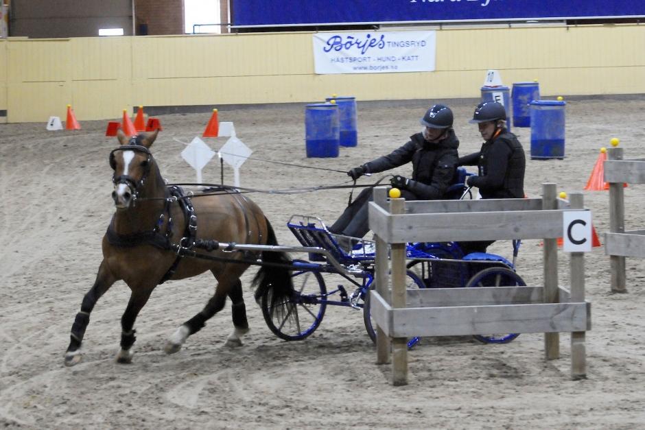 Med ponnyer i topptrim segrade Johanna i Hjulkul