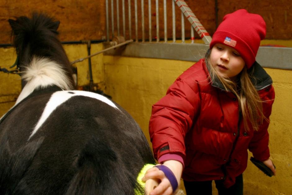 Det här kan hästar göra för folkhälsan