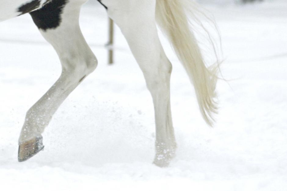 Sekundstrid på snö