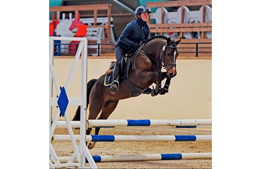 XTop Hästak RP192