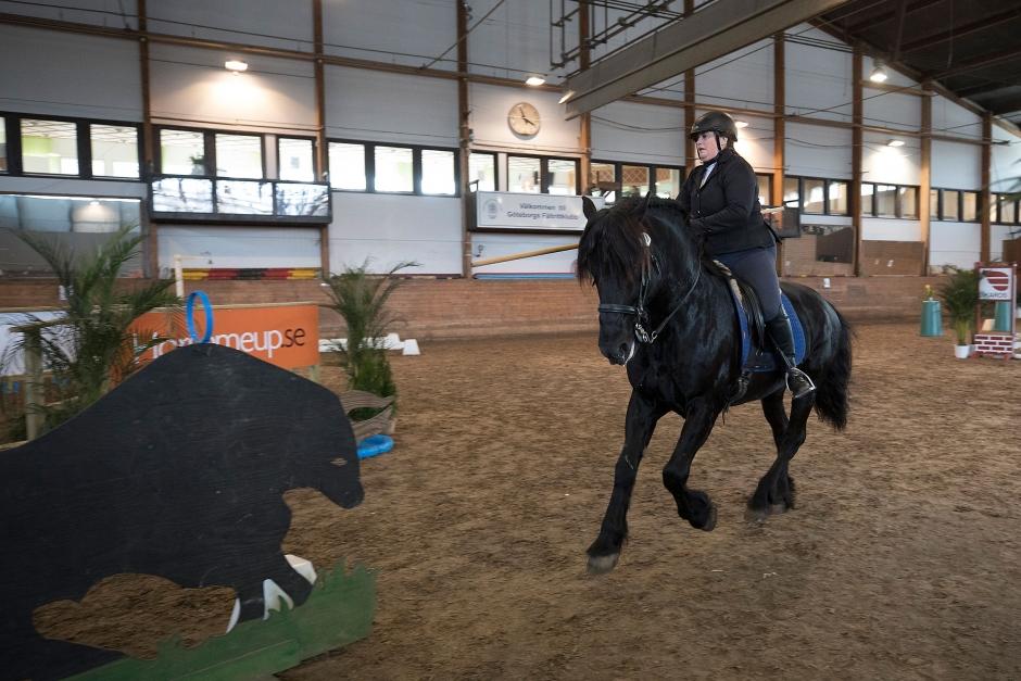 Sveriges VM-lag i Working Equitation utsett