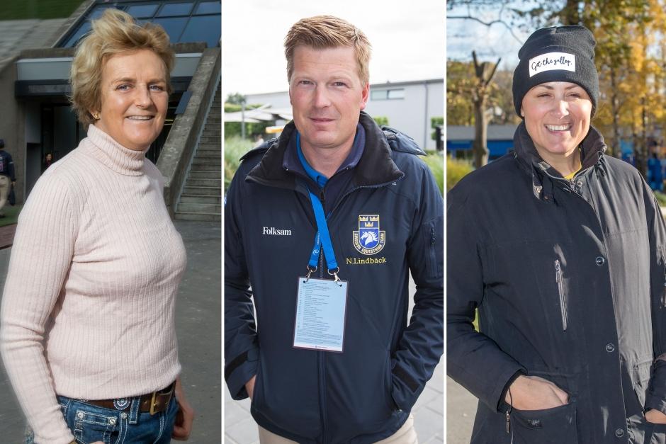 Fyra svenska ryttare ställer upp i FEI-val