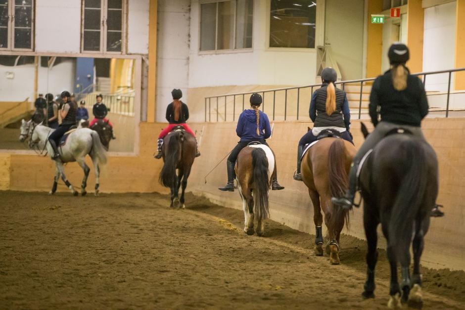 Hästnäringen bjöd in till politikerträffar