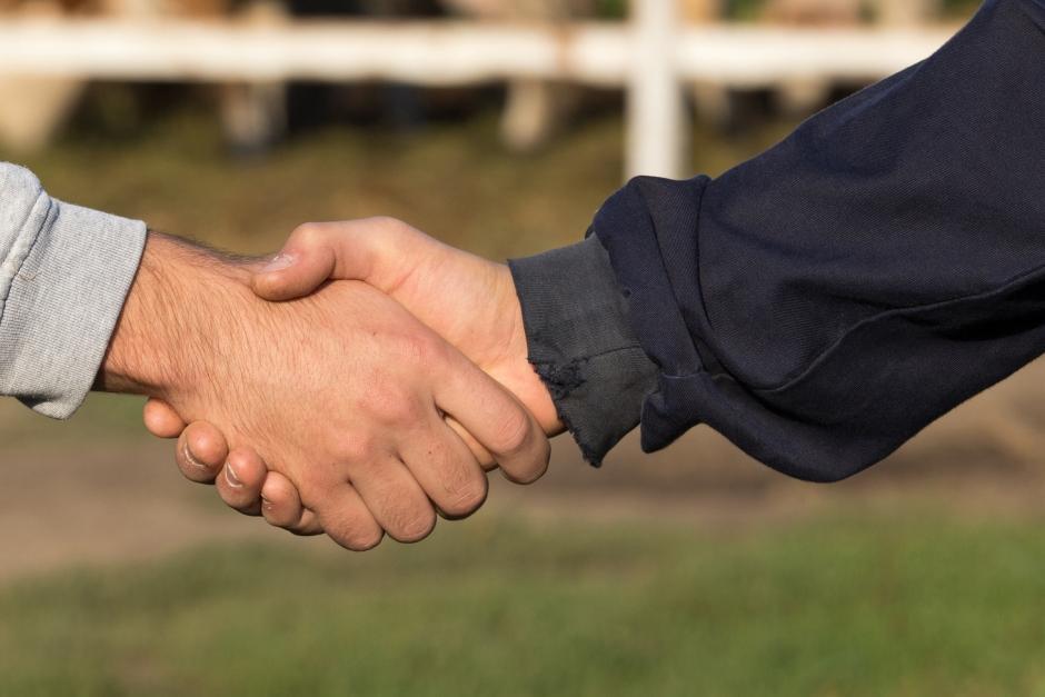 Regeringen ändrar sig om lag vid hästköp