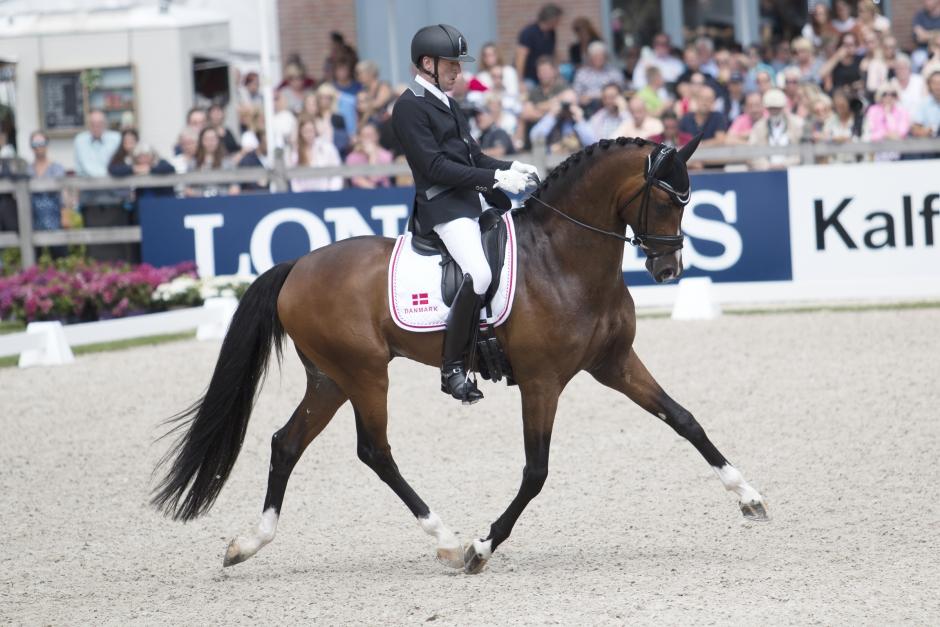 Danska hästar uttagna till unghäst-VM
