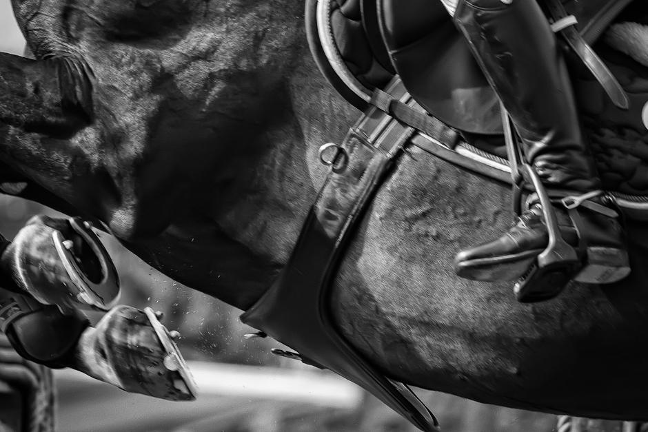 Viktoria Sander förlorade två av sina fem hästar i Valencia