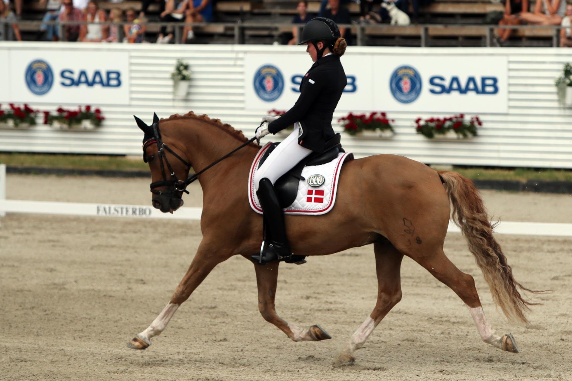 Mathilde Kalstrup Jensen - Cake Royal (val f-11 e Casino Royale KWE, uppf Sabine Goldberg) 70,958%