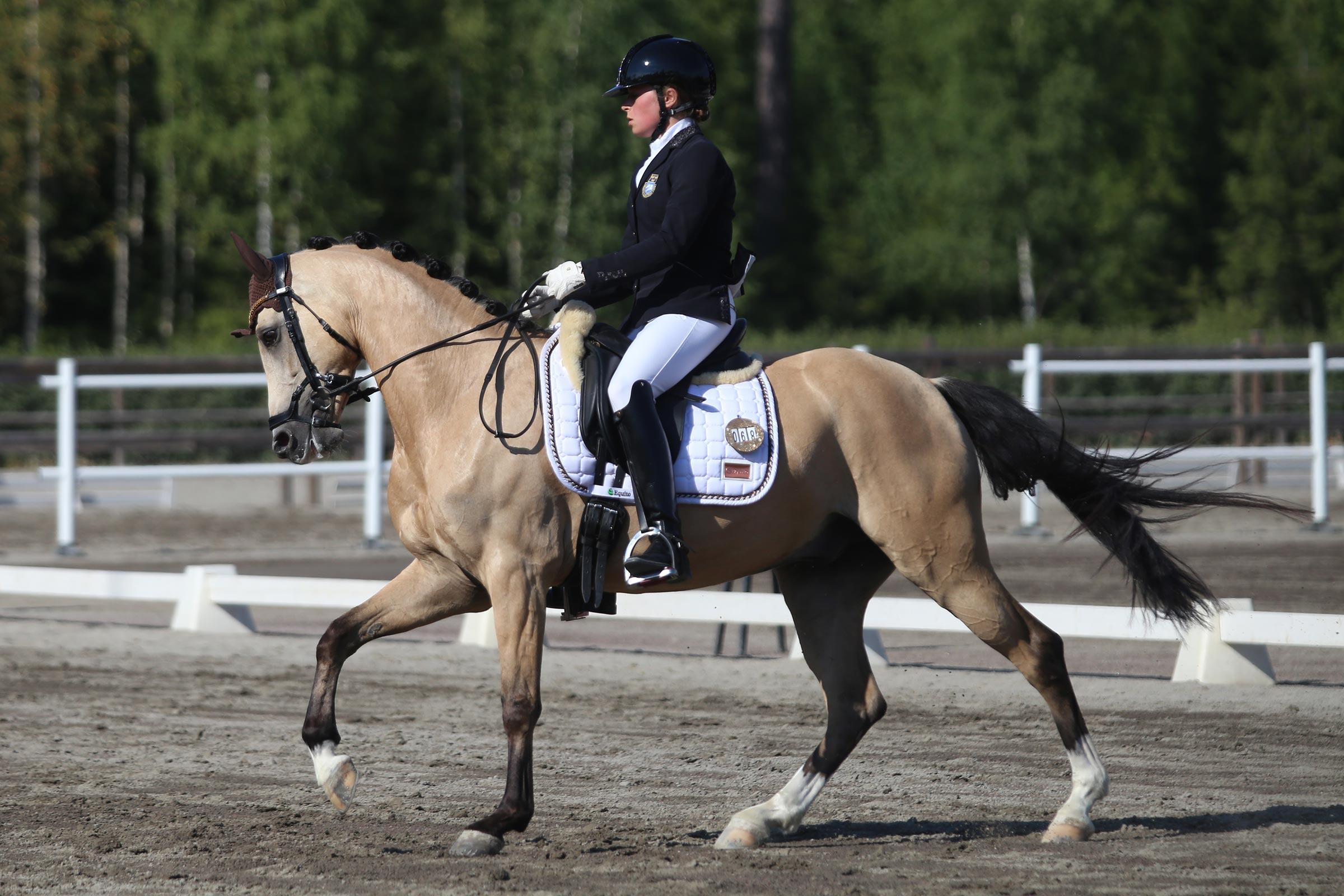 Silver: Ebba Nilsson - Hamilton (NWPCS val f-13 e Brouwershaven Diamond Hit-Veenstra's Promise, uppf L. Snippe) 165,800