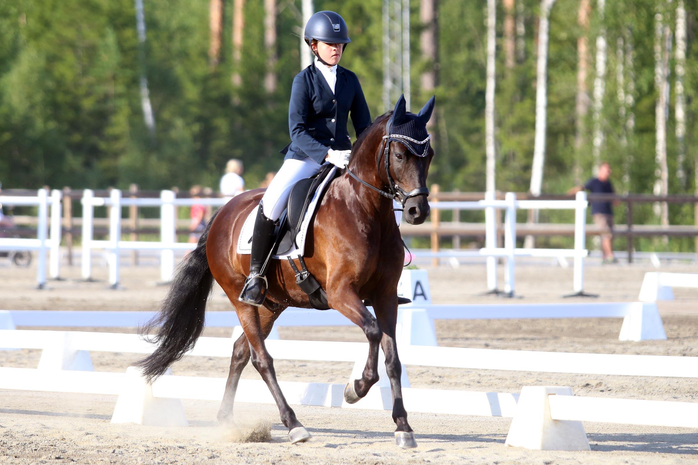 Brons: Julia Roswall - Taxman (ASRP val f-12 e Weltman-Lodor Tywysog, uppf AB Novitas) 159,00