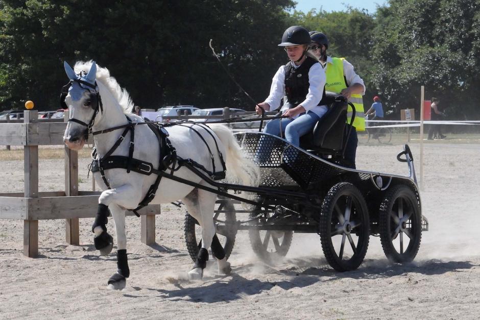 Succé för sportkörningen på Ribban nära Malmö city