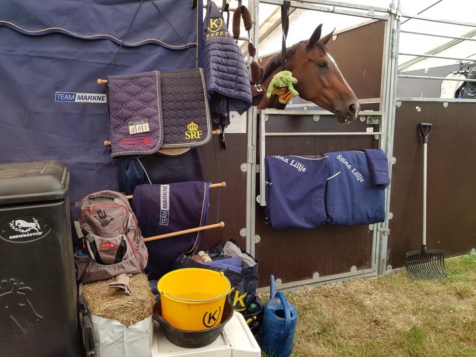 Häng med hästskötaren bakom kulisserna i Falsterbo
