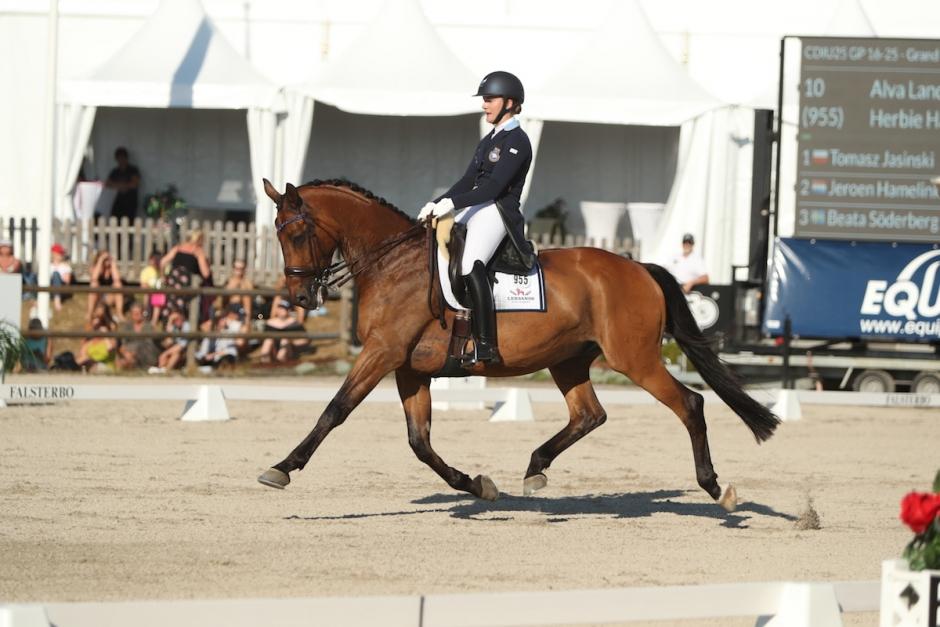 Alva Landers häst tillbaka som GP-vinnare efter skada