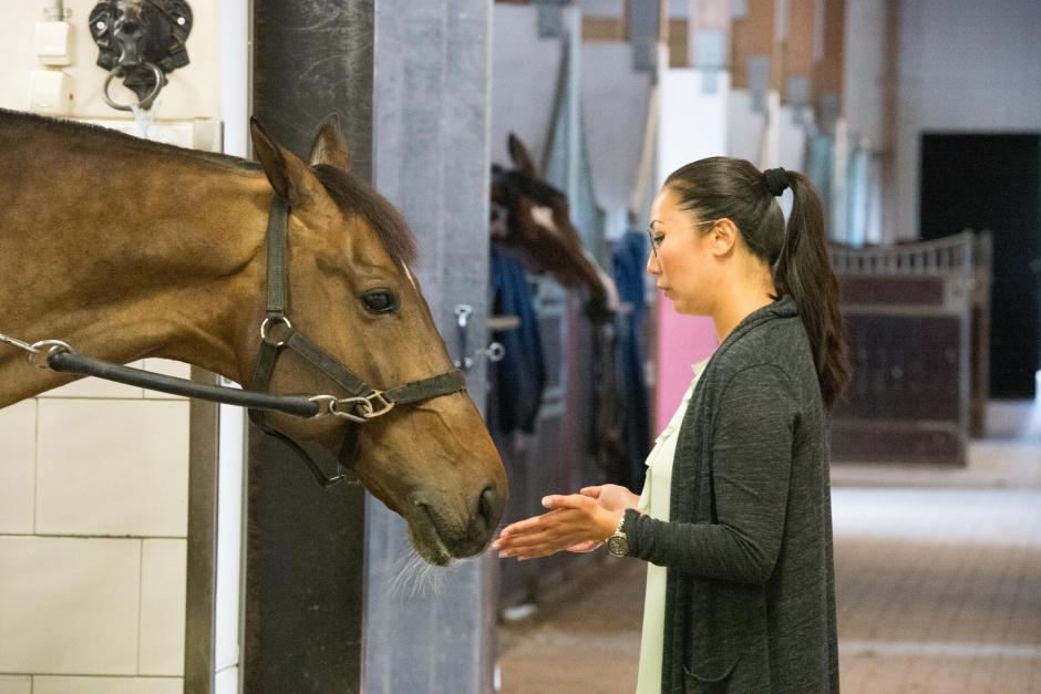 Ditte Young hjälper elitryttare att förstå sina hästar