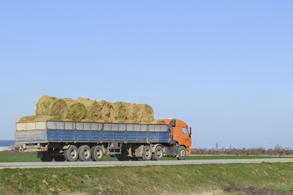Köpa utländskt grovfoder? Det här ska du hålla koll på