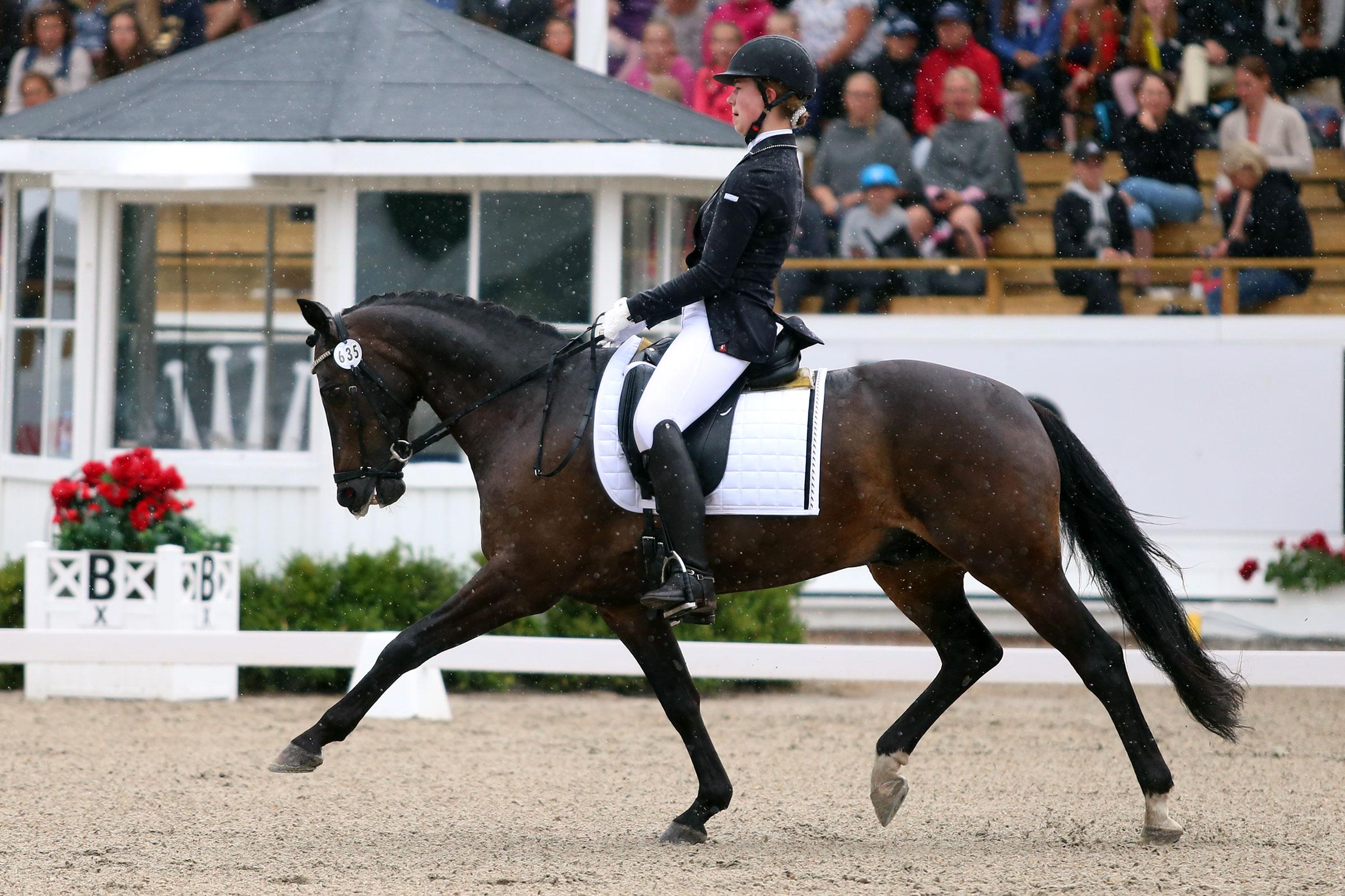 Johanna Burholm - Ben (val f-02 okänd härstamning) 64,675%