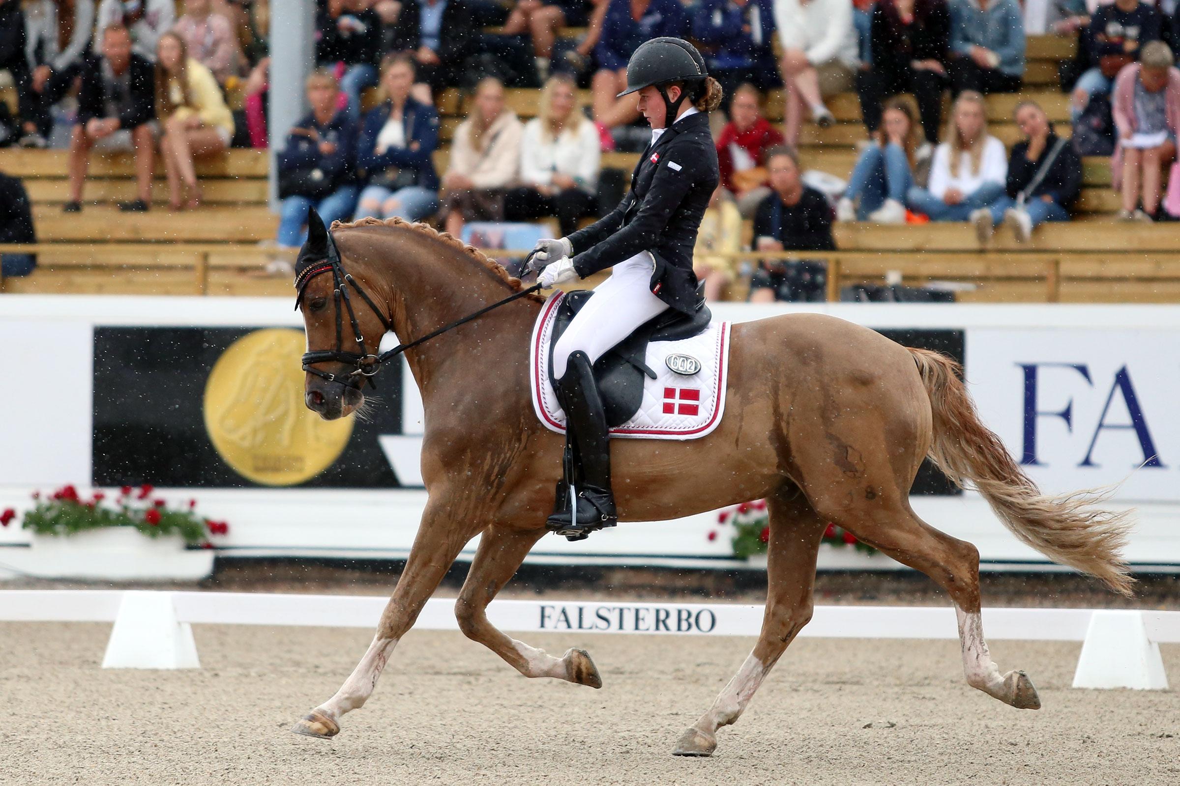 Mathilde Kalstrup Jensen - Cake Royal (val f-11 e Casino Royale KWE, uppf Sabine Goldberg) 70,041%