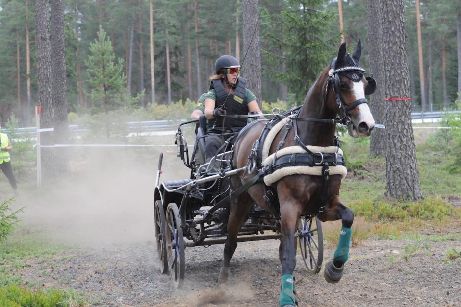 Svenskarna körde in placeringar i Danmark