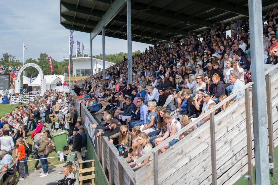 Norges Ryttareförbund ser allvarligt på Hattelands spöanvändning