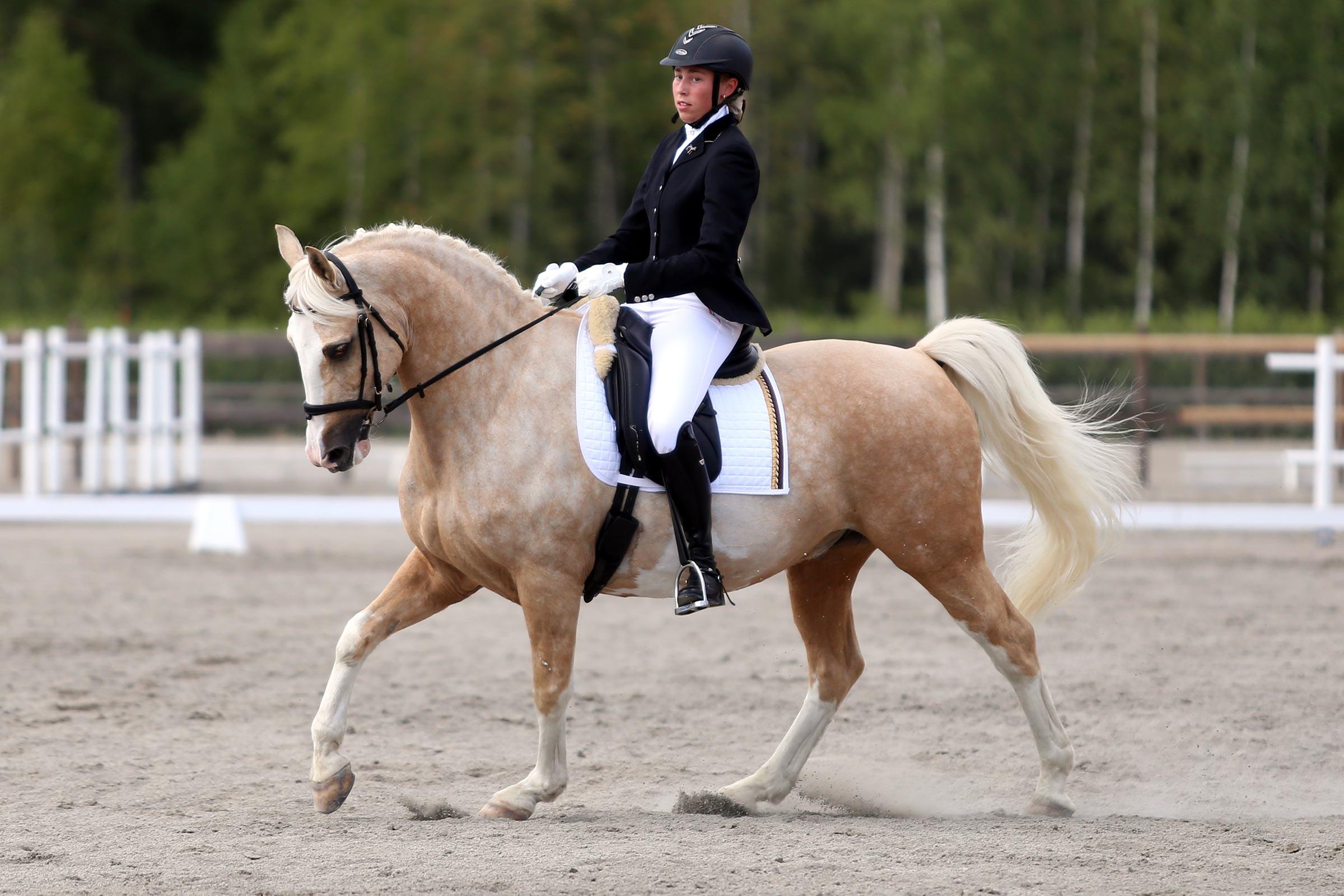 Silver: Cajsa Bergh Andersson - Dumle (KP val f-07 okänd härstamning)