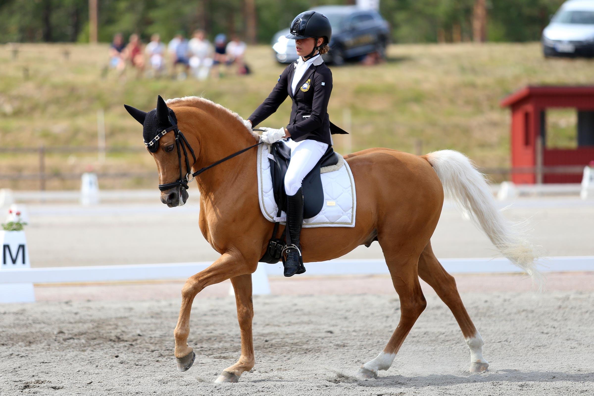 Brons: Emilia Berglund Bergåkra - Jarno RP 145 (ASRP hingst f-01 e Coelenhage's Purioso-Coelenhage's Let's Be the Best, uppf R. Bonhof)