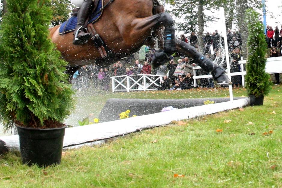 Alla hästar till final efter kritik mot uttagning
