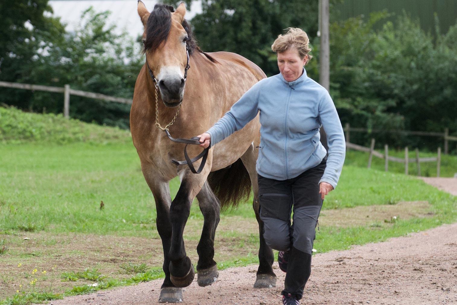 Karin Söderqvist och Lukas springer upp inför veterinären i Åstorp.