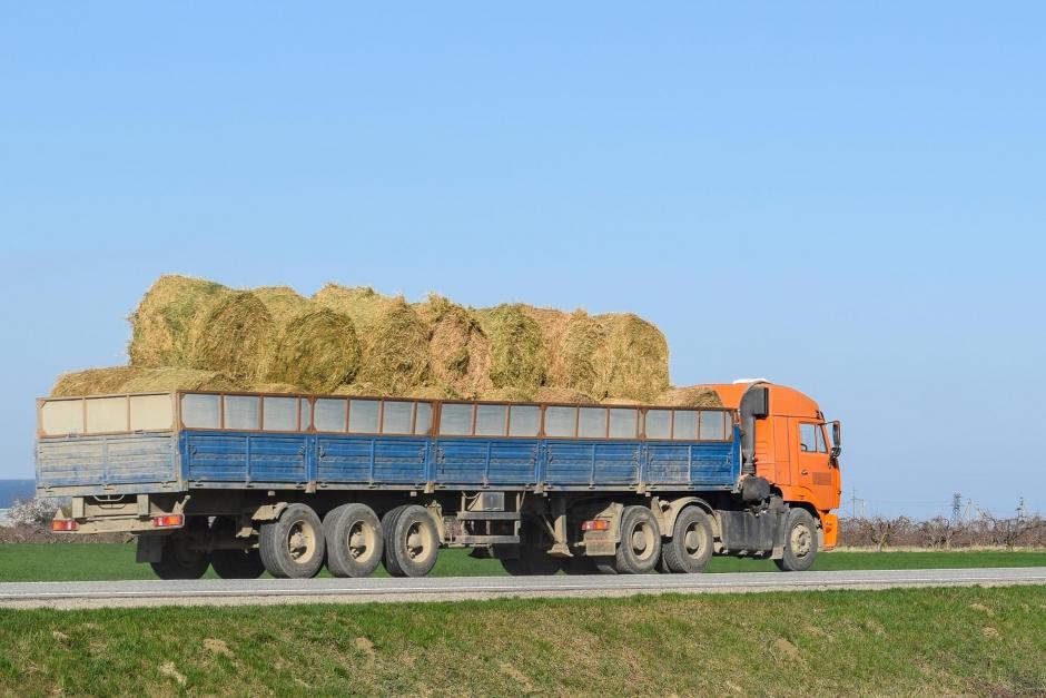 Smittorisk: Jordbruksverket manar till försiktighet vid grovfoderimport