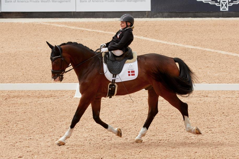 FEI World Equestrian Games™ Tryon USA Stinna Tange Kaastrup on Horsebo Smarties DEN Photo FEI/Liz Gregg