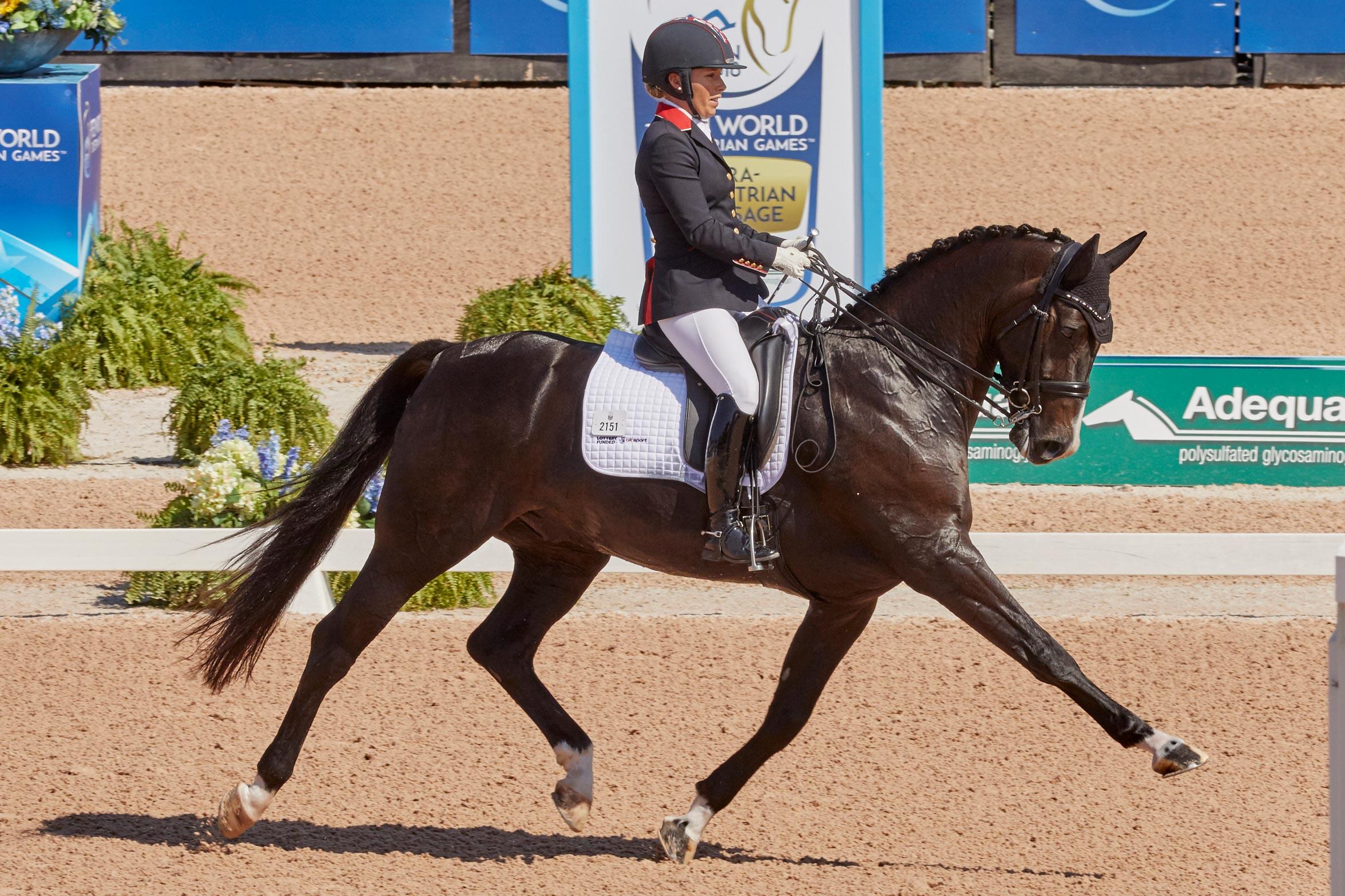 FEI World Equestrian Games™ Tryon USA FEI World Equestrian Games™ Tryon USA Sophie Wells GBR on C Fatal Attraction Photo FEI/Liz Gregg