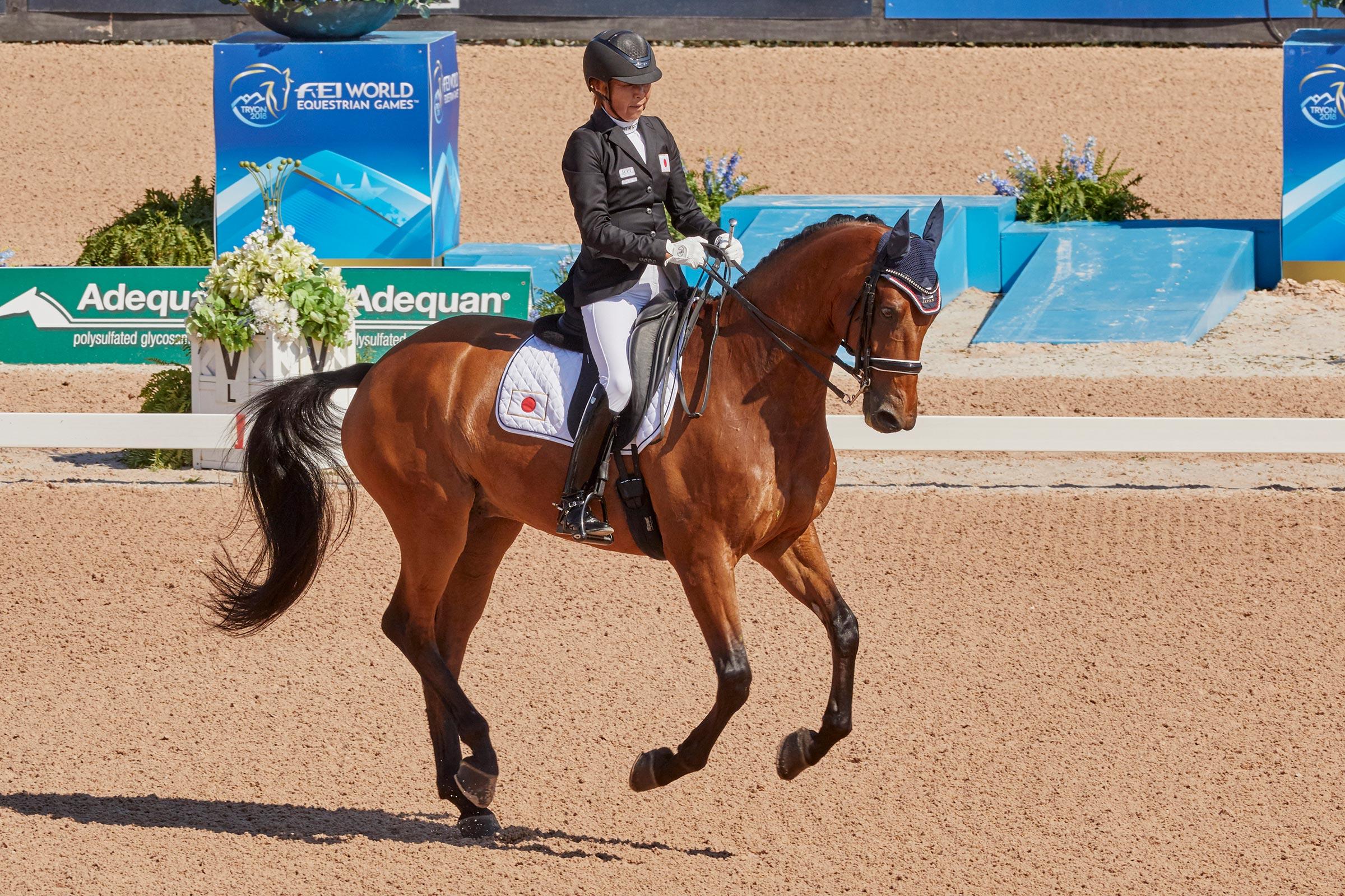 FEI World Equestrian Games™ Tryon USA FEI World Equestrian Games™ Tryon USA Bronze medalist Tomoko Nakamura JP on Djazz F Photo FEI/Liz Gregg