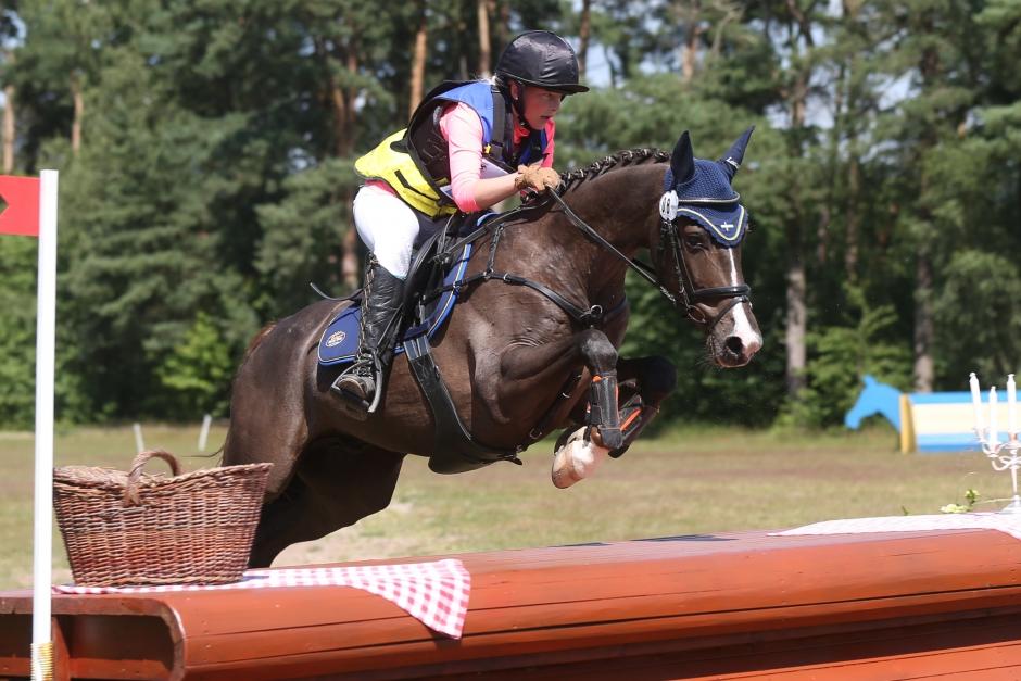 Engla och Magnificent har inlett karriären i hästklasser – seger direkt